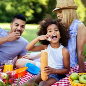 Country Family Gourmet Picnic – Hired Items